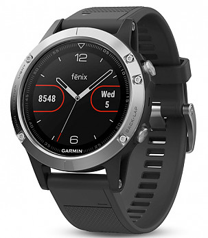Fenix 5 Silver with Black Band